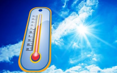 Consider Using a Dehumidifier for Summer Cooling