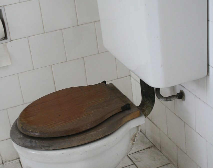 Signs You Need Toilet Repair or Replacement Service